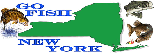 GoFishNewYork - New York Fishing Info